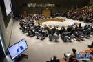 联合国谴责加沙暴力冲突