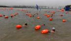 4000余名泳友们从河南游到山西 横渡母亲河