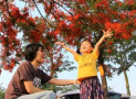 漳州:绿化花化彩化