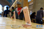 新款iPhone将不再免费提供耳机插孔适配器