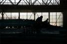 杭州飞机制造厂史料图辑首发 钱学森曾在这里实习