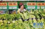 """廊坊永清县:实现蔬菜智能化生产 种出""""精品菜"""""""