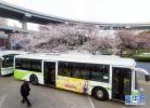 廊坊市公交集團 首家服務業標準化示范單位
