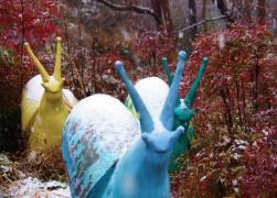 不只有樱花 郑州樱桃沟迎来今冬第一场瑞雪