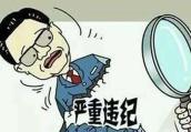 叶县政协党组书记、主席彭德惠接受纪律审查和监察调查