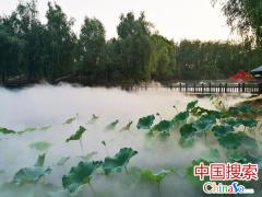如入仙境 沃众人造雾系统实现多场景运用