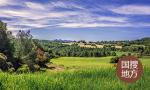 山东扶持发展规模化生态林场和乡村林场