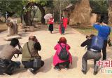 河南郏县古树名木主题摄影大赛在茨芭镇开镜