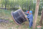河南鲁山:加紧改造电网 服务扶贫产业发展