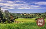 駐馬店市委副書記、市長朱是西到西平縣調研指導高標準農田建設、農村人居環境整治等工作