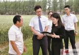 郵儲銀行沛縣支行:立足地方特色 創新貸款模式