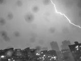 福建省高考期间南部地区有阵雨或雷阵雨