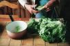 夏季刮油蔬菜排行榜出炉 多吃有利于健康
