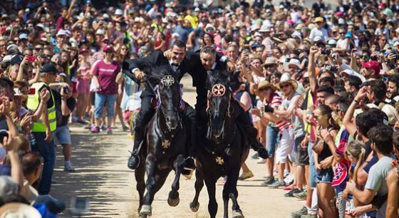 西班牙騎手駕馬街道飛奔 慶聖約翰節