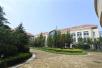山东大学公共治理研究院在青岛校区揭牌成立