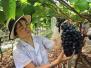 高温下的农人:桌上让人流口水的蔬果背后是汗水流干的他们