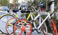南京共用單車半年擴容45萬 公共自行車總數7萬多輛