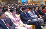 李小琳以什么身份参加了博鳌亚洲论坛年会?