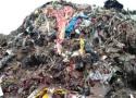 浙江温岭两次向督察组承诺清运垃圾山,实则埋入地下二次污染