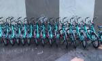 """沈阳街头15辆青桔单车被一条钢丝线缠住成了""""僵尸车"""""""