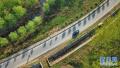 既要是交通线也要成风景线!今后江苏农村公路这样建