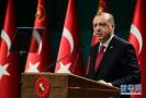 非正式结果!外媒:土耳其总统埃尔多安称自己在选举中胜出