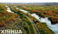 张家口:官厅水库国家湿地公园一期工程计划年底完成