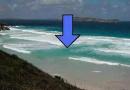 海边这种洋流最要命