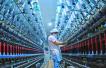 解析中国经济半年报:消费顶梁柱 怎样更给力?