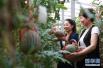 如何打造出高品质、高收益的休闲农庄?