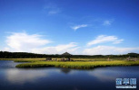 河北:全面打响大气污染集中整治夏季会战