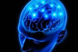 年少饮食习惯不良 年老痴呆风险增大