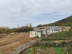 河南73栋违建别墅被没收背后 开发商谎称要建养老院
