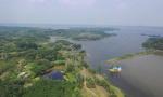 河南罗山:立足生态资源 奏响绿色发展进行曲